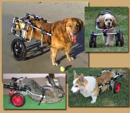 K-9 Cart Pet Wheelchairs